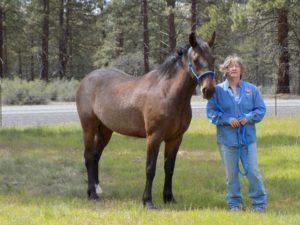 Gypsy with trainer Virginia Curtis Threadgill